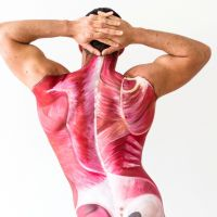 Anatomical bodypaint showing muscles and bone in a model's back